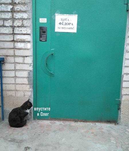 http://forumupload.ru/uploads/0016/c4/68/44/928471.jpg