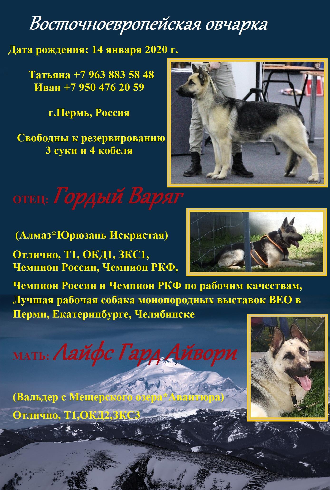 http://forumupload.ru/uploads/0018/24/cd/344/83906.jpg