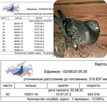 http://forumupload.ru/uploads/0019/8b/76/107/t941211.jpg