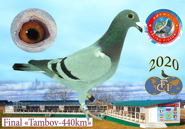 http://forumupload.ru/uploads/0019/8b/76/15/t24102.jpg