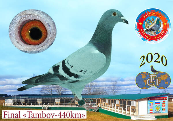 http://forumupload.ru/uploads/0019/8b/76/15/t31820.jpg