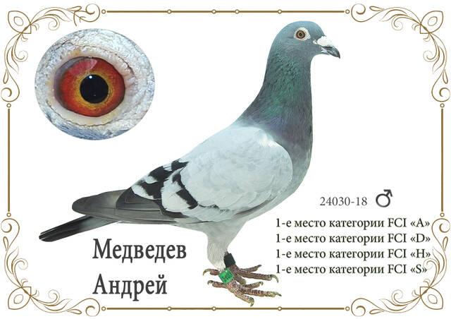 http://forumupload.ru/uploads/0019/8b/76/2/24030.jpg