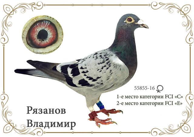 http://forumupload.ru/uploads/0019/8b/76/2/55855.jpg
