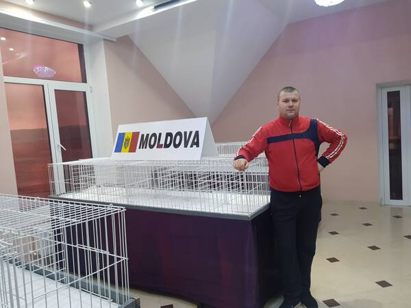 http://forumupload.ru/uploads/0019/8b/76/7/t668420.jpg