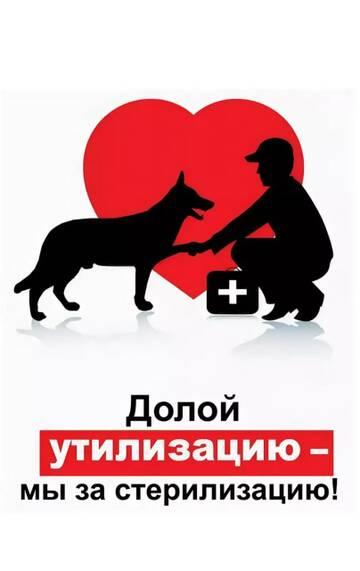 http://forumupload.ru/uploads/0019/92/bc/19/t286320.jpg