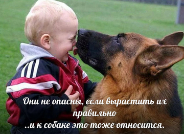 http://forumupload.ru/uploads/0019/92/bc/19/t390025.png