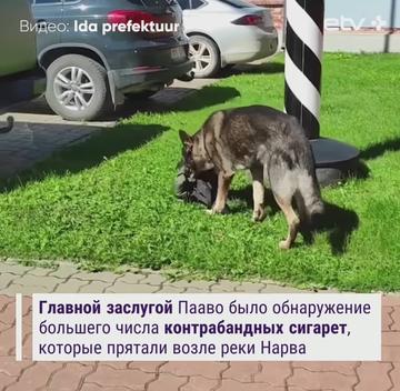 http://forumupload.ru/uploads/0019/92/bc/19/t453686.png