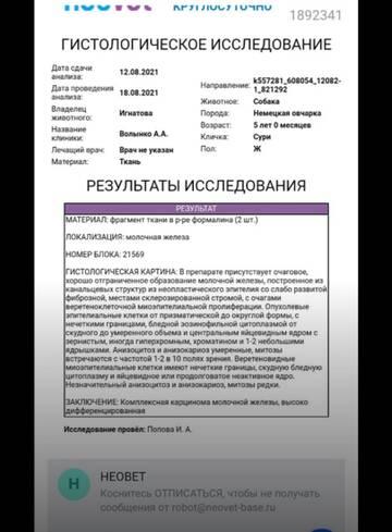 http://forumupload.ru/uploads/0019/92/bc/19/t514559.jpg