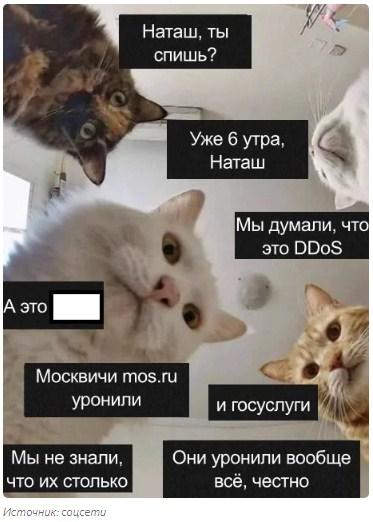 http://forumupload.ru/uploads/0019/a5/88/2/167254.jpg
