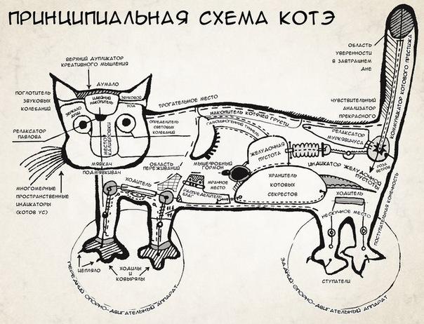 http://forumupload.ru/uploads/0019/a5/88/2/63121.jpg