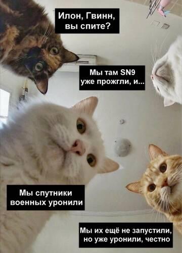 http://forumupload.ru/uploads/0019/c5/0a/31/t462847.jpg