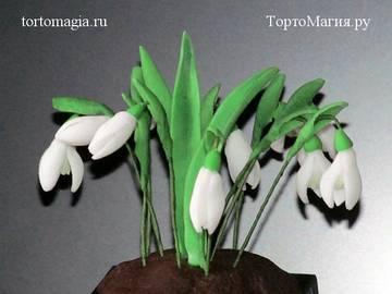http://forumupload.ru/uploads/001a/39/7c/116/t57938.jpg