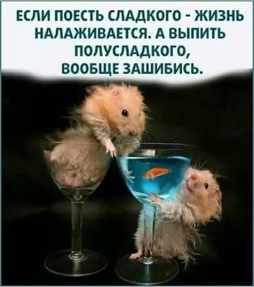 http://forumupload.ru/uploads/001a/39/7c/319/t97675.jpg