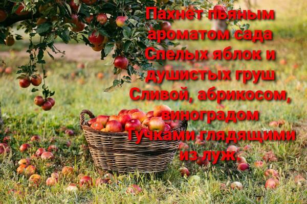 http://forumupload.ru/uploads/001a/39/7c/614/t147989.jpg