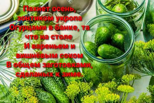 http://forumupload.ru/uploads/001a/39/7c/614/t725169.jpg