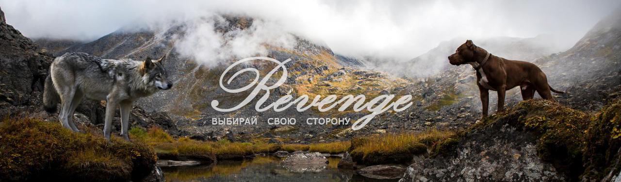 http://forumupload.ru/uploads/001a/af/e5/27/424209.jpg