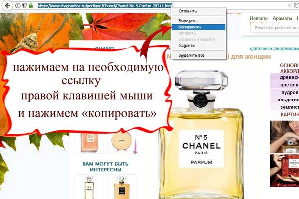 http://forumupload.ru/uploads/001a/ea/96/3/t694149.jpg
