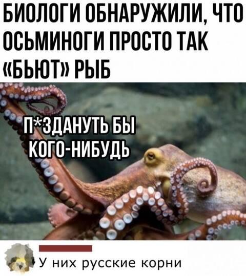 http://forumupload.ru/uploads/001b/17/05/12/t667759.jpg