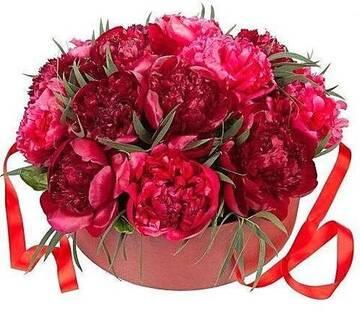 http://forumupload.ru/uploads/0000/09/52/6770/t997491.jpg