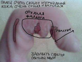 http://forumupload.ru/uploads/0000/0b/b5/8572-1.jpg