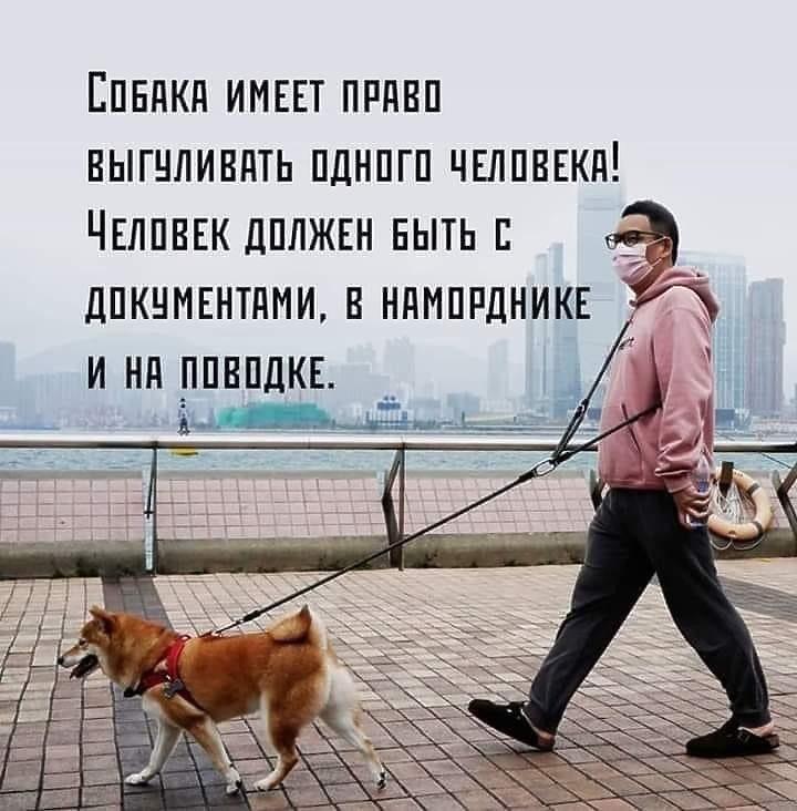 http://forumupload.ru/uploads/0000/0c/61/2725/324546.jpg