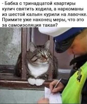 http://forumupload.ru/uploads/0000/0c/61/2725/353694.jpg
