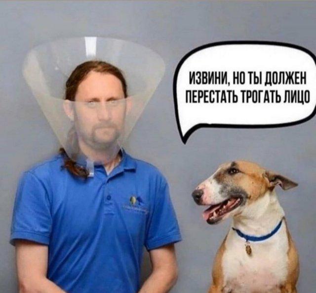 http://forumupload.ru/uploads/0000/0c/61/2725/961392.jpg