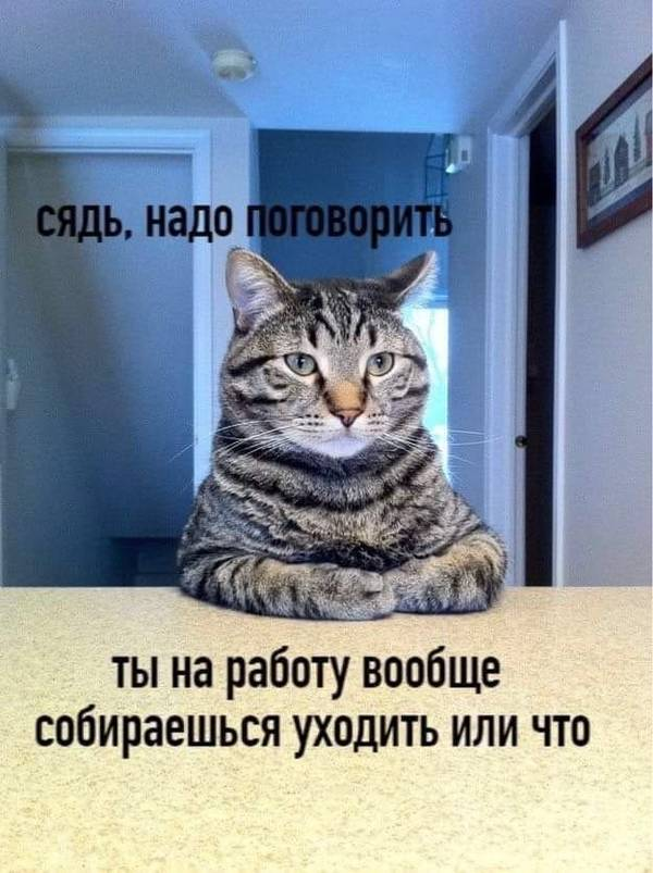 http://forumupload.ru/uploads/0000/0c/61/566/t105643.jpg