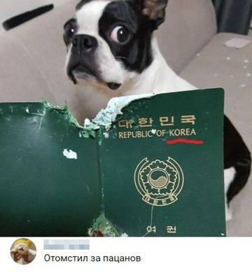 http://forumupload.ru/uploads/0000/19/18/209/t14861.jpg