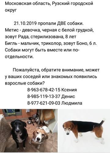http://forumupload.ru/uploads/0000/1c/6a/11792/t729182.jpg