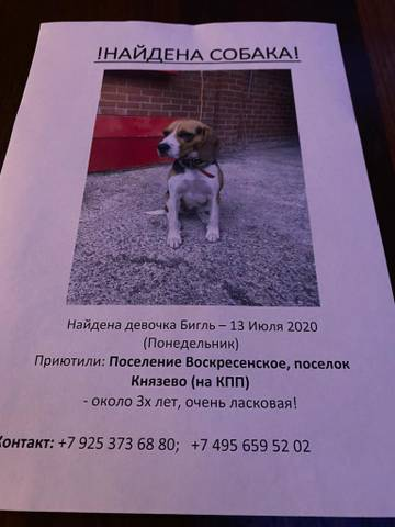 https://forumupload.ru/uploads/0000/1c/6a/11946/t440421.jpg