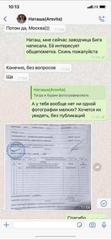 https://forumupload.ru/uploads/0000/1c/6a/12076/t464005.png