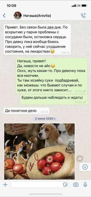https://forumupload.ru/uploads/0000/1c/6a/12076/t893943.png