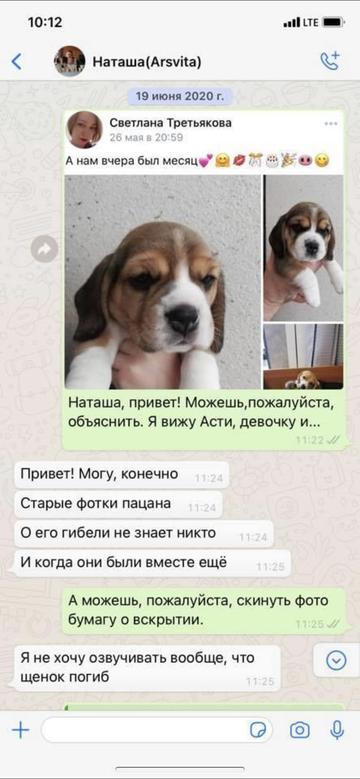 https://forumupload.ru/uploads/0000/1c/6a/12076/t899356.png