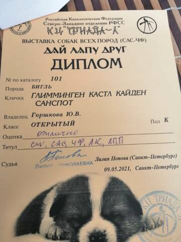 https://forumupload.ru/uploads/0000/1c/6a/2863/t672930.jpg