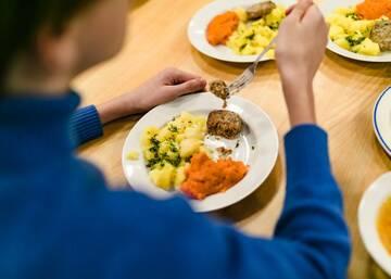 Потому что нельзя просто взять и накормить детей говном – у Петербурга год на решение проблем соцпита