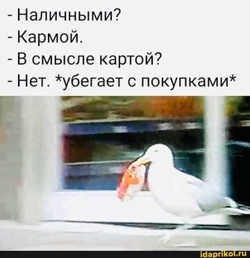https://forumupload.ru/uploads/0001/2c/38/2/t434160.jpg