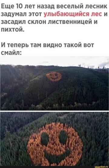 https://forumupload.ru/uploads/0001/2c/38/2/t509779.jpg