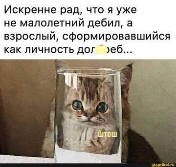 https://forumupload.ru/uploads/0001/2c/38/2/t537089.jpg