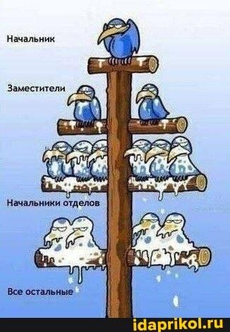 https://forumupload.ru/uploads/0001/2c/38/2/t627740.jpg