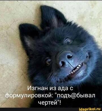 https://forumupload.ru/uploads/0001/2c/38/2/t739774.jpg