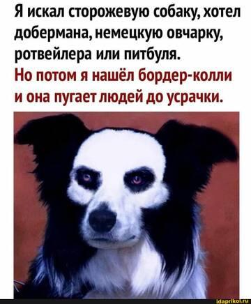 https://forumupload.ru/uploads/0001/2c/38/2/t851170.jpg