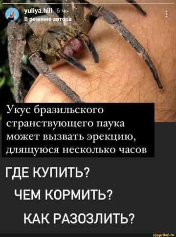 https://forumupload.ru/uploads/0001/2c/38/2/t872631.jpg