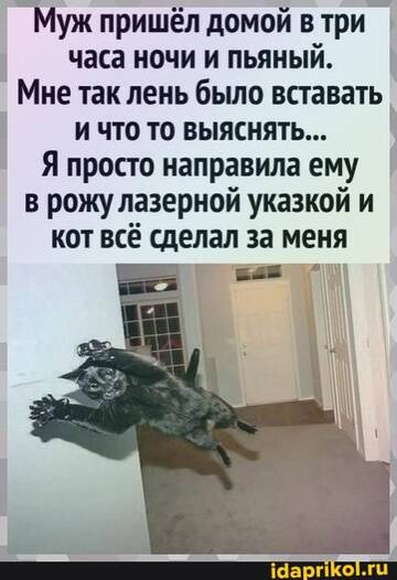 https://forumupload.ru/uploads/0001/2c/38/2/t89554.jpg