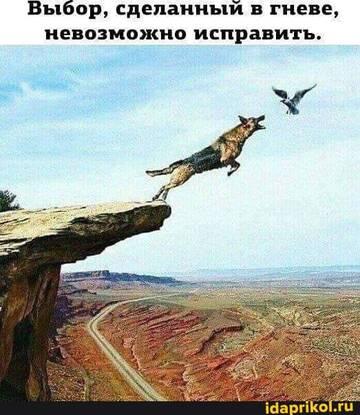 https://forumupload.ru/uploads/0001/2c/38/2/t940374.jpg