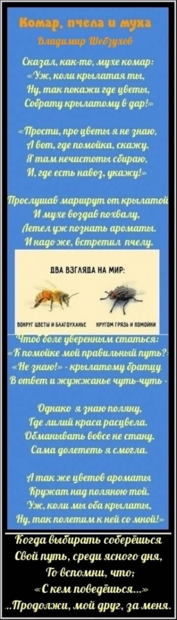 https://forumupload.ru/uploads/0002/72/3f/23479/t181942.jpg