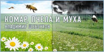 https://forumupload.ru/uploads/0002/72/3f/23479/t223336.jpg