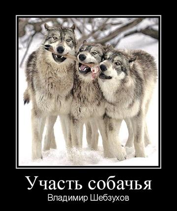 https://forumupload.ru/uploads/0002/72/3f/23479/t748661.png