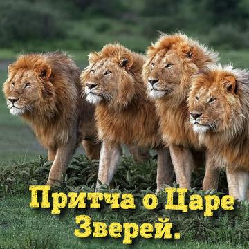 https://forumupload.ru/uploads/0002/72/3f/23479/t810218.png