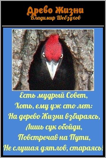 https://forumupload.ru/uploads/0002/72/3f/23479/t940157.png